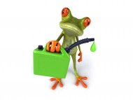 Frog and a fuel canister / 3D Animals