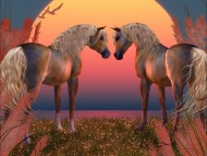 two horses / 3D Animals