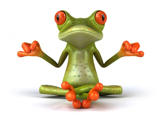 Free Send to Mobile Phone Frog is meditating 3D Animals wallpaper num.1