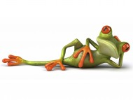Frog is lying / 3D Animals
