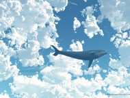 whale on sky / 3D Animals