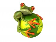 Frog hold the globe / 3D Animals