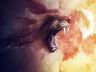 lion / 3D Animals