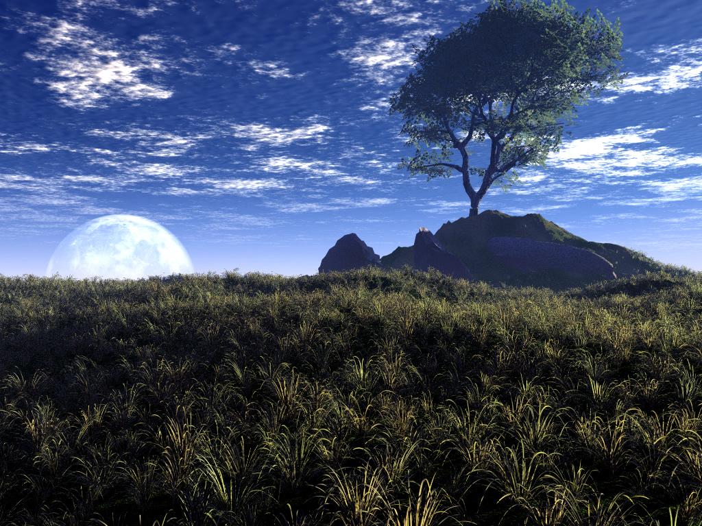 Free download full size 3d landscape wallpaper num 141 for 3d outdoor wallpaper