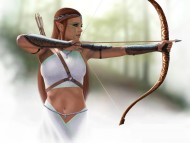 Download Elf archer / Fantasy