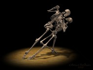 dance skeleton / Horror