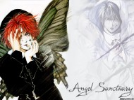 Download Angel Sanctuary / Anime