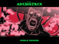 Animatrix / Anime