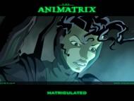 Download Animatrix / Anime