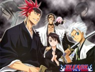 Download Bleach / Anime