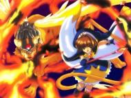 Card Captor Sakura / Anime