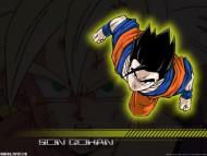 Dragon Ball Z / Anime