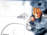Dragon Ball Z / Anime