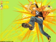 Hikaru No Go / Anime