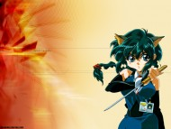 Hyper Police / Anime