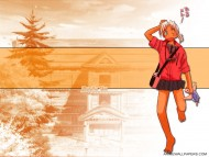 Download Love Hina / Anime