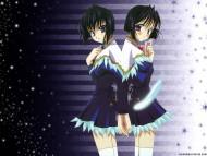 Seraphincall / Anime