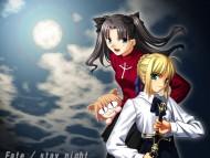Shingetsutan Tsukihime / Anime