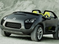Citroen / High quality Cars