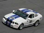 White Race Mustang / Ford