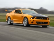 mustang gt / Ford