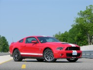 sporty GT 500 / Mustang