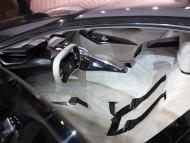 onyx in side / Peugeot