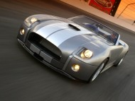 Cobra Concept 2004 / Shelby