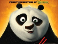 Kung Fu Panda 2 / Cartoons