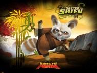 Kung Fu Panda / Cartoons