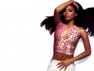 Aaliyah / Celebrities Female