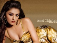 High quality Aarti Chabria  / Celebrities Female