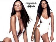 Adriana Lima / Celebrities Female