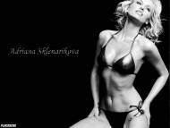 Adriana Sklenarikova / Celebrities Female