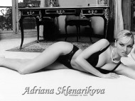 Adriana Sklenarikova / Celebrities Female