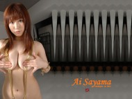 Ai Sayama / Celebrities Female