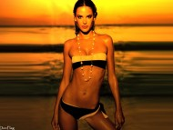 Alessandra Ambrosio / Celebrities Female
