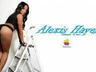 High quality Alexis Hayes  / Celebrities Female