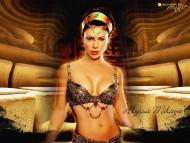 Alyssa Milano / Celebrities Female