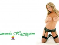 Amanda Harrington / Celebrities Female