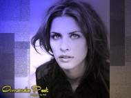 Download Amanda Peet / Celebrities Female