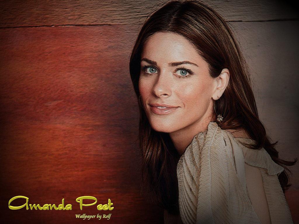 Download Amanda Peet Celebrities Female Wallpaper