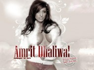 High quality Amrit Dhaliwal  / Celebrities Female