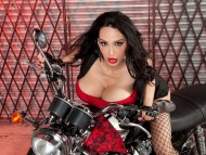 Amy Anderssen / Celebrities Female