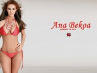 High quality Ana Bekoa  / Celebrities Female