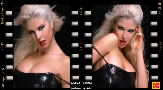 ... Send to Mobile Phone Andrea Teodora Celebrities Female wallpaper num.5