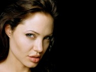 Angelina Jolie / High quality Celebrities Female