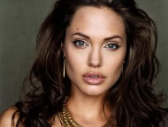 High quality Angelina Jolie  / Celebrities Female