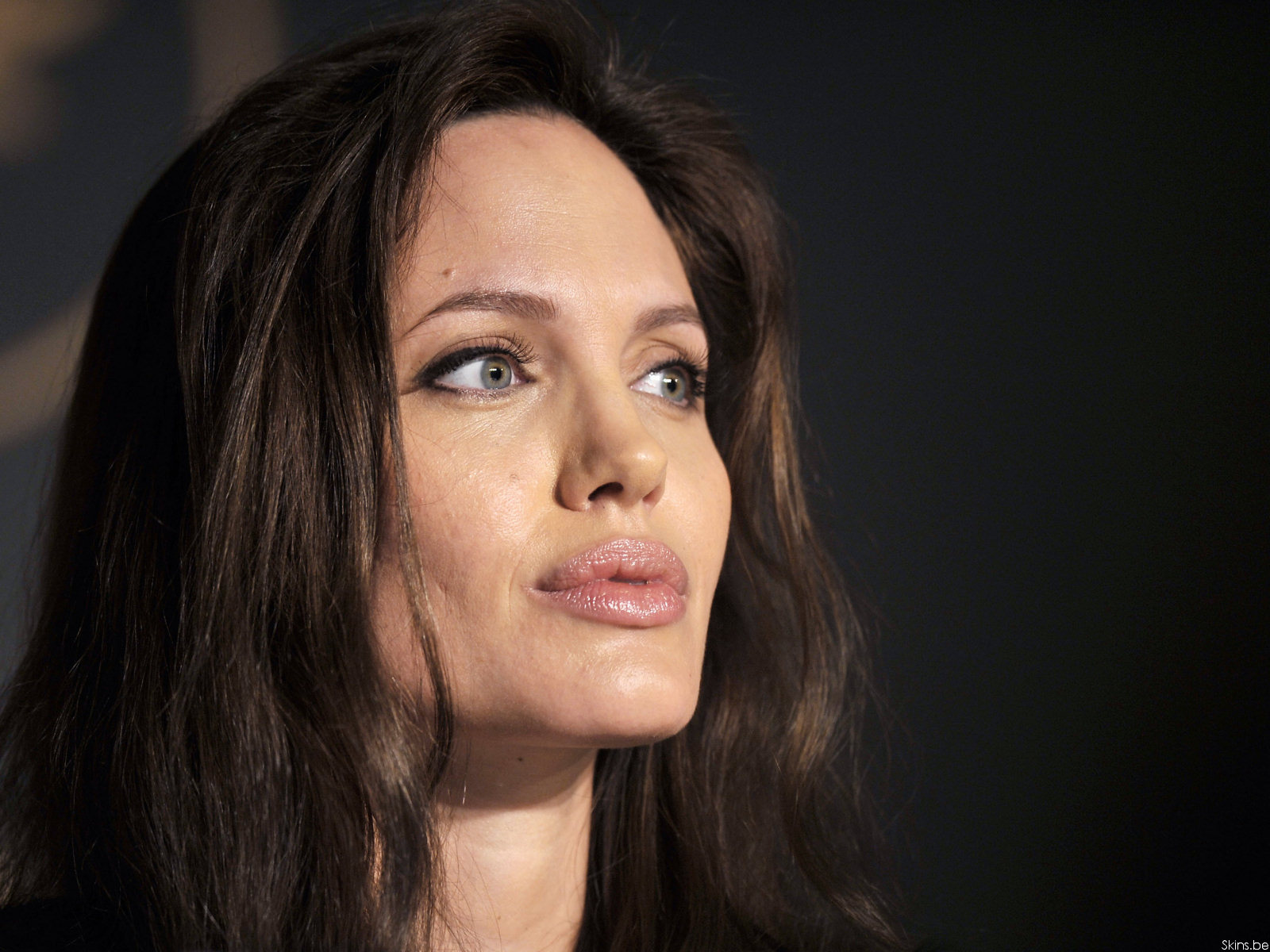 Download Hq Angelina Jolie Wallpaper Celebrities Female