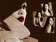 Download Angelina Jolie / Celebrities Female